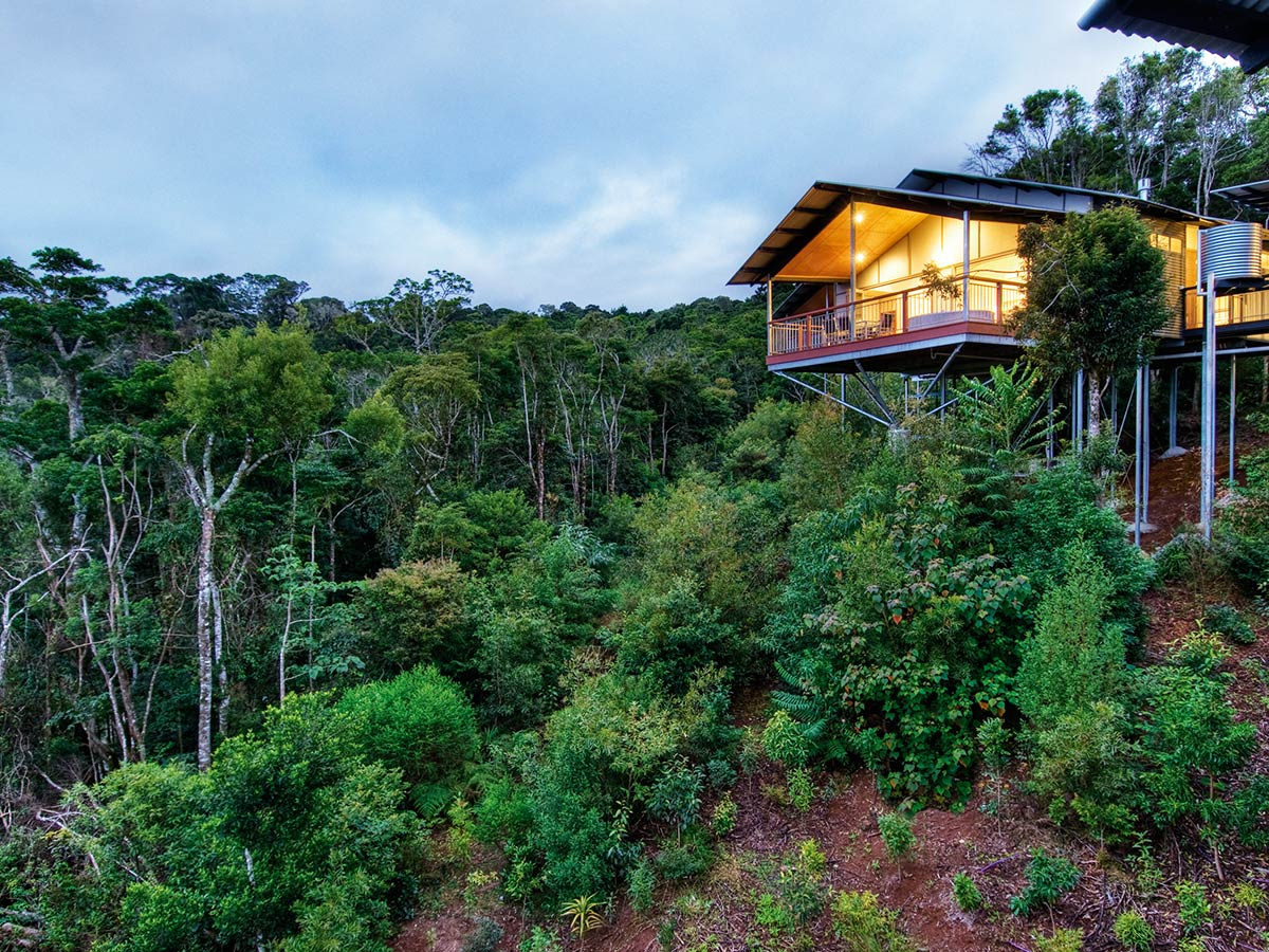 O'Reilly's Rainforest Retreat & Villas