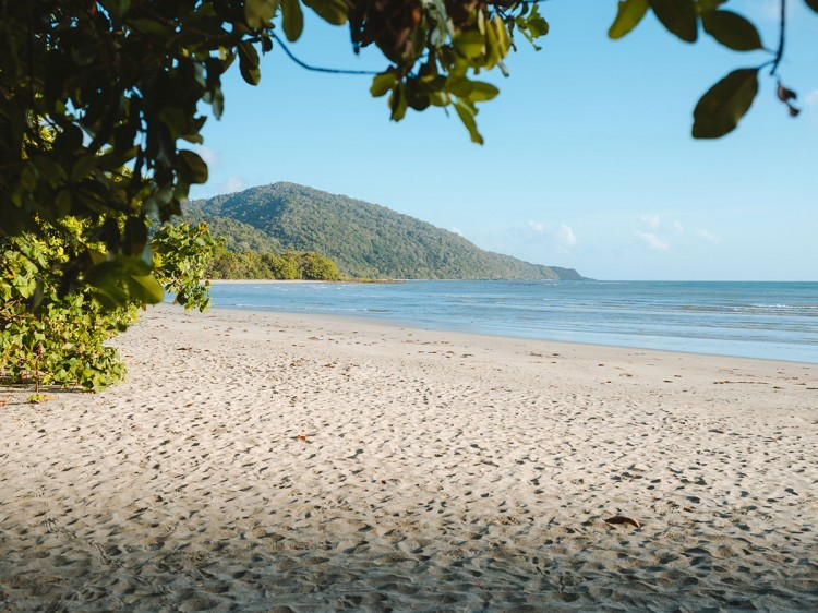 Cape Tribulation Beach | Tropical Trails