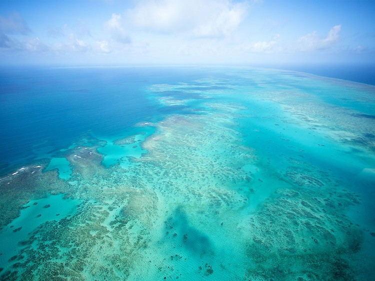 Great Barrier Reef | Cairns & the Great Barrier Reef