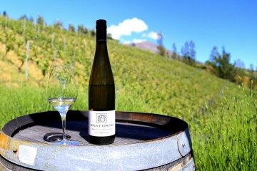 Mount Edward Winery Riesling - Queenstown Holidays